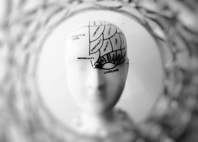 Les 5 longueurs d'onde de votre cerveau