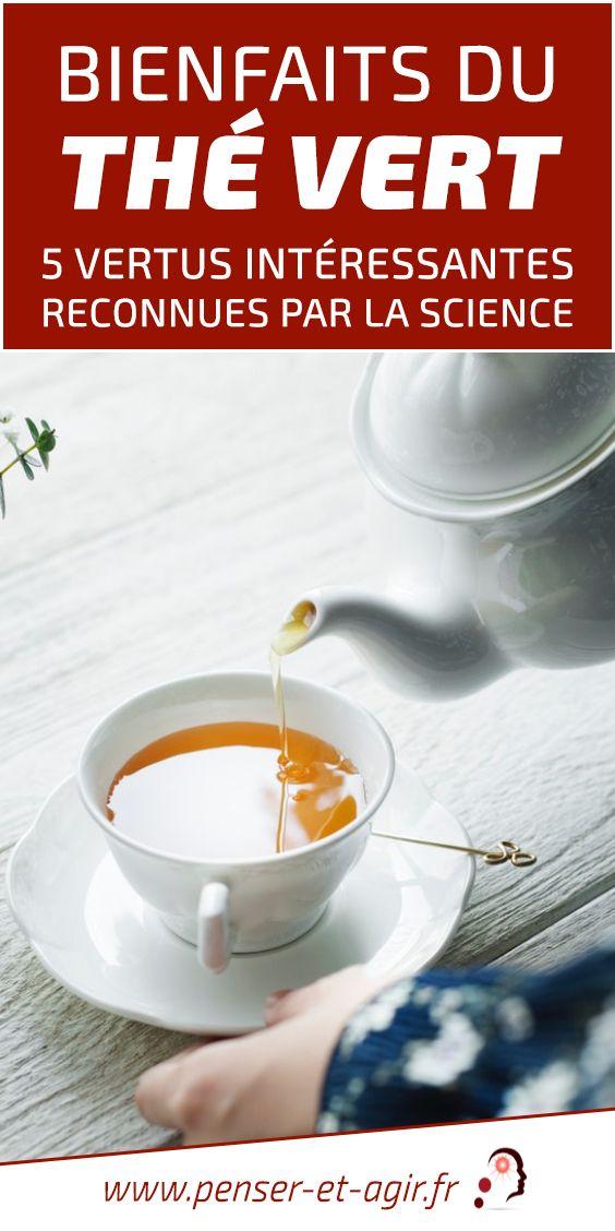 Bienfaits du thé vert : 5 vertus intéressantes reconnues par la science  Que savez-vous des incroyables bienfaits du thé vert? Réduction du stress, perte de poids, stimulation du métabolisme, traite...