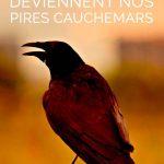 Phobie des oiseaux : Quand les oiseaux deviennent nos pires cauchemars