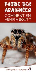 Phobie des araignées : comment en venir à bout ?
