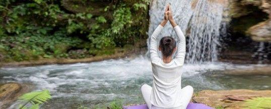 Chakra racine :  le premier des 7 principaux chakras du corps humain