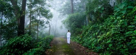 Méditation vipassana : une voie vers notre être intérieur