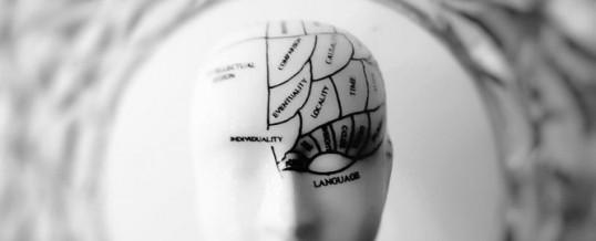 Méridien de l'intestin grêle : optimisez votre cerveau physiologique