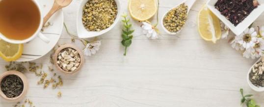 La phytothérapie : se soigner par les plantes, c'est possible