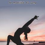 Yang qiao mai: à la découverte du vaisseau de mobilité du yang