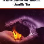 Le Yin qiao mai: à la découverte du vaisseau chenille Yin