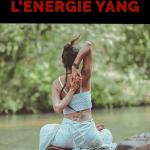 Les différents points de circulation de l'énergie yang