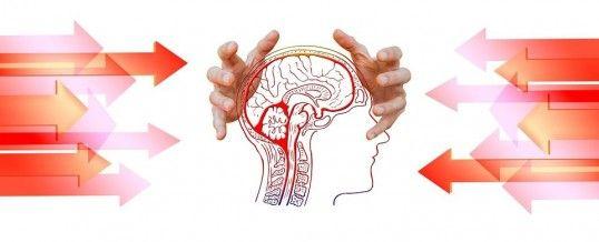 neurofeedback dynamique