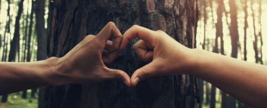 Synchronicité amoureuse : Et si le hasard n'existait pas