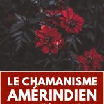 chamanisme amerindien
