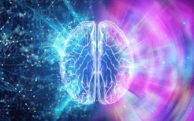 La conscience quantique : voici tout ce que vous devez savoir